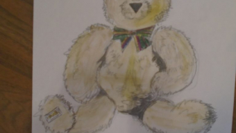 Observational drawings of Cuddly Toys