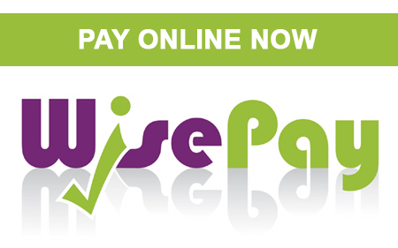 Wise Pay Button